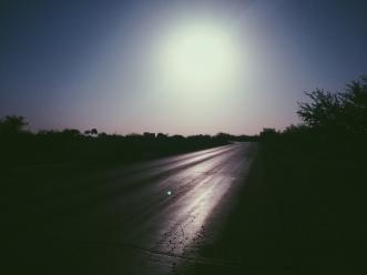 Road runner, road runner.