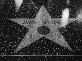 A sliver of the Walk of Fame.