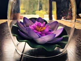Lotus decoration at Espaço Tibet.
